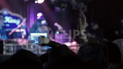 DJ Funkmaster Flex onstage at hip hop concert - fans watching music show