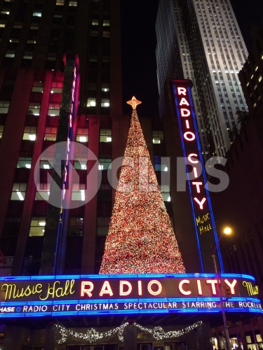 Christmas tree on Radio City Music Hall at night