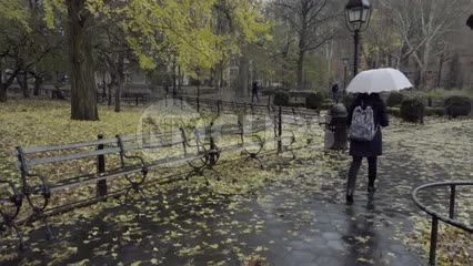 yellow leaves on rainy fall day in Washington Square Park - raining with woman walking with umbrella in slow motion