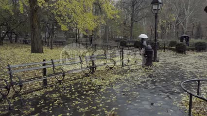 fall rainy day in Washington Square Park - yellow leaves on ground - raining on benches