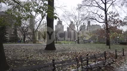 panning in Washington Square Park on wet rainy day with beautiful trees and leaves on ground