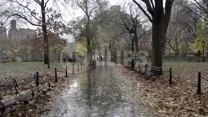 walkway in Washington Square Park on wet rainy fall day - raining with leaves on ground