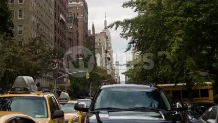 crossing 5th Ave and Taxicabs waiting at crosswalk on summer day - Empire State Building view from Lower Fifth Avenue