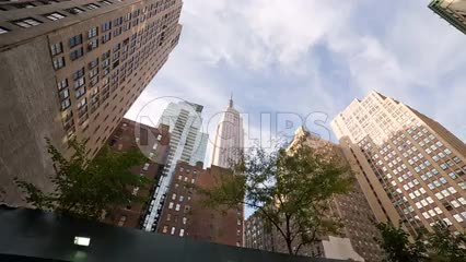 driving past Empire State Building and trees on sunny day from street view