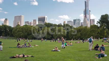 Central Park meadow in summer with people sunbathing on grass