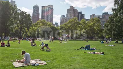 people on towels in Central Park grass in summer