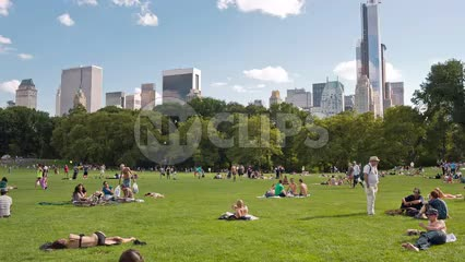 people laying out on grass in Central Park on summer day