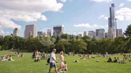 bright sunny day in Central Park - people on grass in summer