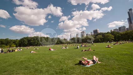 people tanning in Central Park on summer day