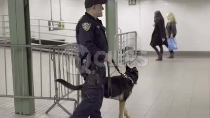 cop with police dog in subway station - NYPD in New York City