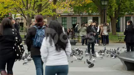 children running to flock of pigeons in Washington Square Park on beautiful fall day in New York City