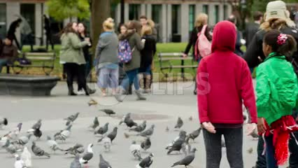 children playing with pigeons in Washington Square Park in fall - birds flocking