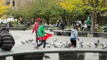children playing with birds, scaring pigeons in Washington Square Park in NYC