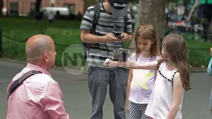 bird trainer teaching girls a trick with pigeon - man and kids in Washington Square Park in summer in NYC