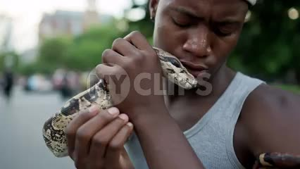 close up of kid with Boa constrictor snake flicking tongue on summer day in Washington Square Park in NYC