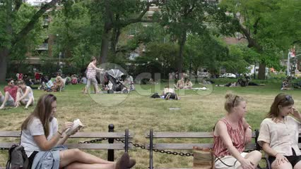 women reading on benches in Washington Square Park in summer with green trees in background and people sunbathing
