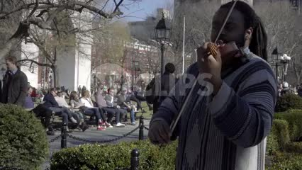 man playing violin in Washington Square Park in fall sunny day NYC