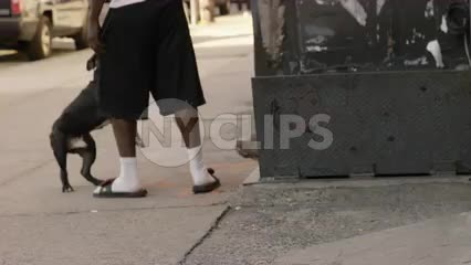 man in sandals and socks with dog in Harlem by cellar doors on summer morning day - Uptown Manhattan NYC