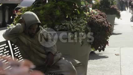 homeless man sleeping on bench on sunny summer day in NYC