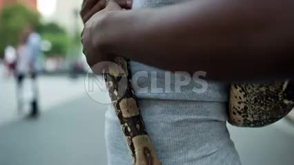 handsome young African American man showing off pet snake in Washington Square Park on summer day