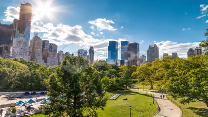 Central Park trees on sunny day with Manhattan skyscrapers - timelapse in 4K and 1080 HD in NYC